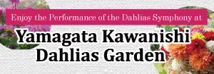 Kawanishi Dahlia Garden